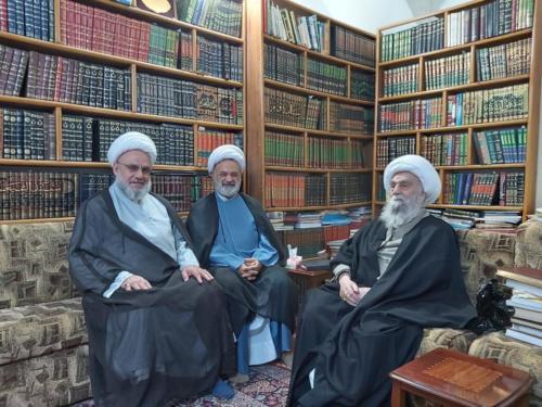 في لقاء تشاوري مع اية الله العظمى الشيخ شمس الدين الواعظي النجف الاشرف